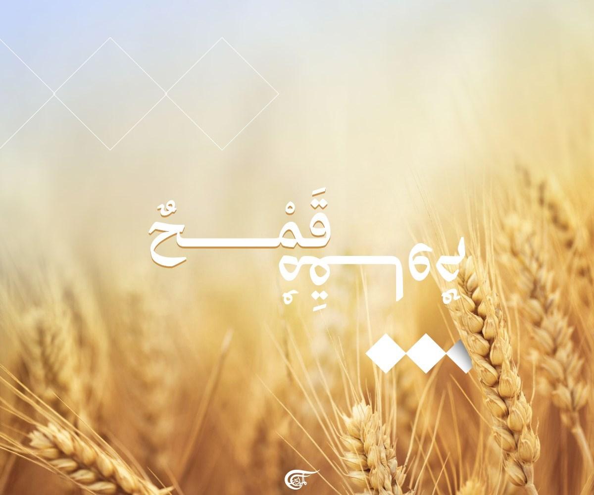 """بلدية عيناثا اللبنانية تعلن """"المقاومة الاقتصادية"""""""