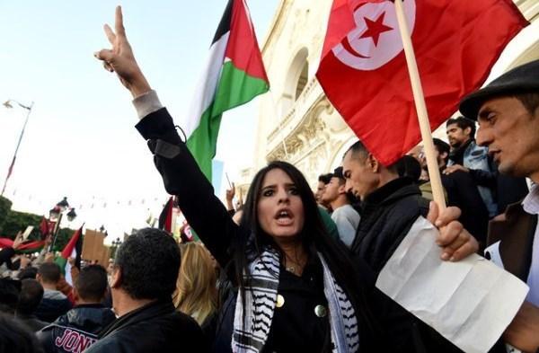 تونس تؤكد التزامها بالقضية الفلسطينية ومناصرتها في المحافل الدولية