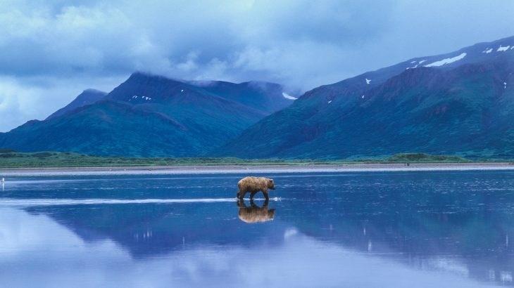 ولاية ألاسكا تعاني من ارتفاع درجات الحرارة