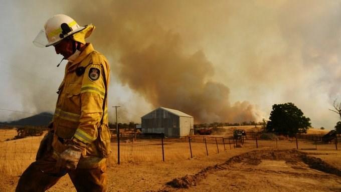 السلطات الأسترالية تلقي الأغذية بالطائرات للحيوانات البرية في مناطق الحرائق