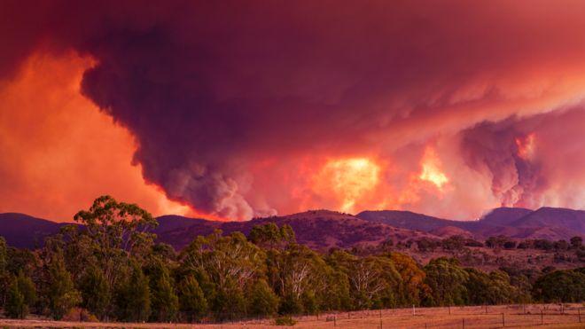 استراليا تعلن حالة الطوارئ تحسباً لخروج حريق غابات كبير عن السيطرة