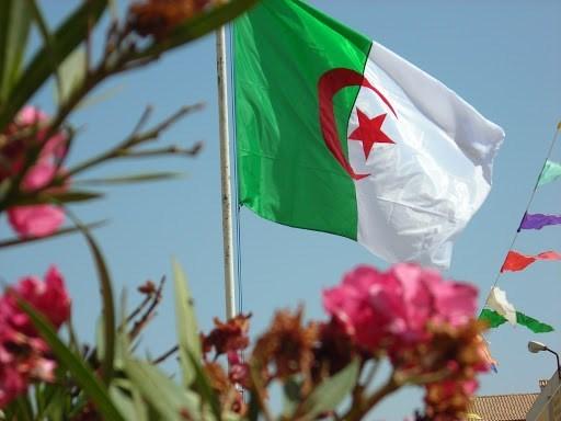 الجزائر والمموّلون لصفقات الأوهام