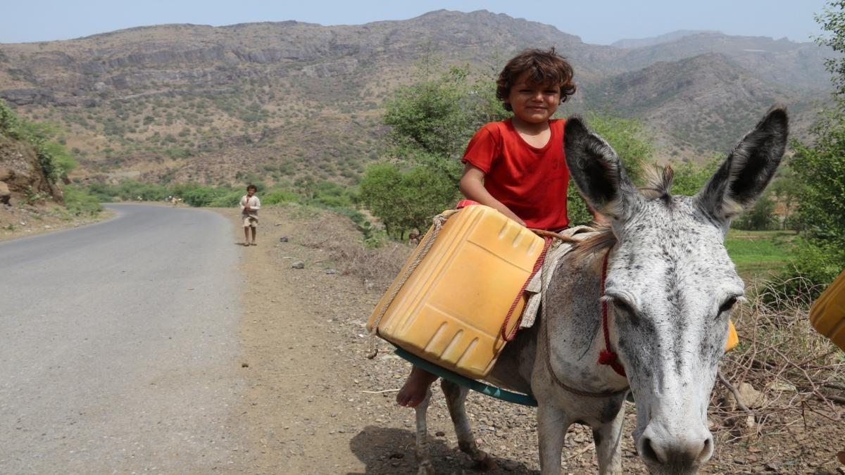 تحوَّلت الحمير إلى حاجة موضوعية حقيقية للاستفادة منها في نقل المياه الصالحة للشرب بواسطة