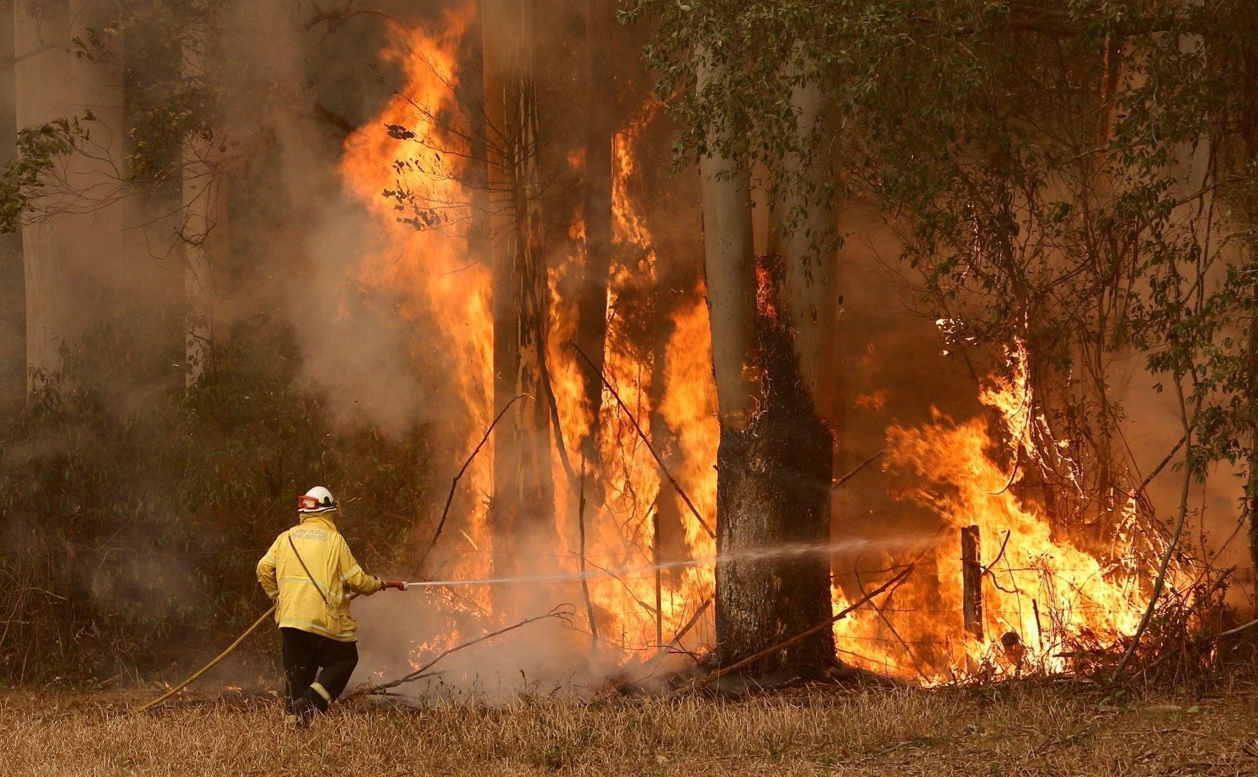 مخاوف من حرائق غابات أستراليا بسبب درجات حرارة قياسية