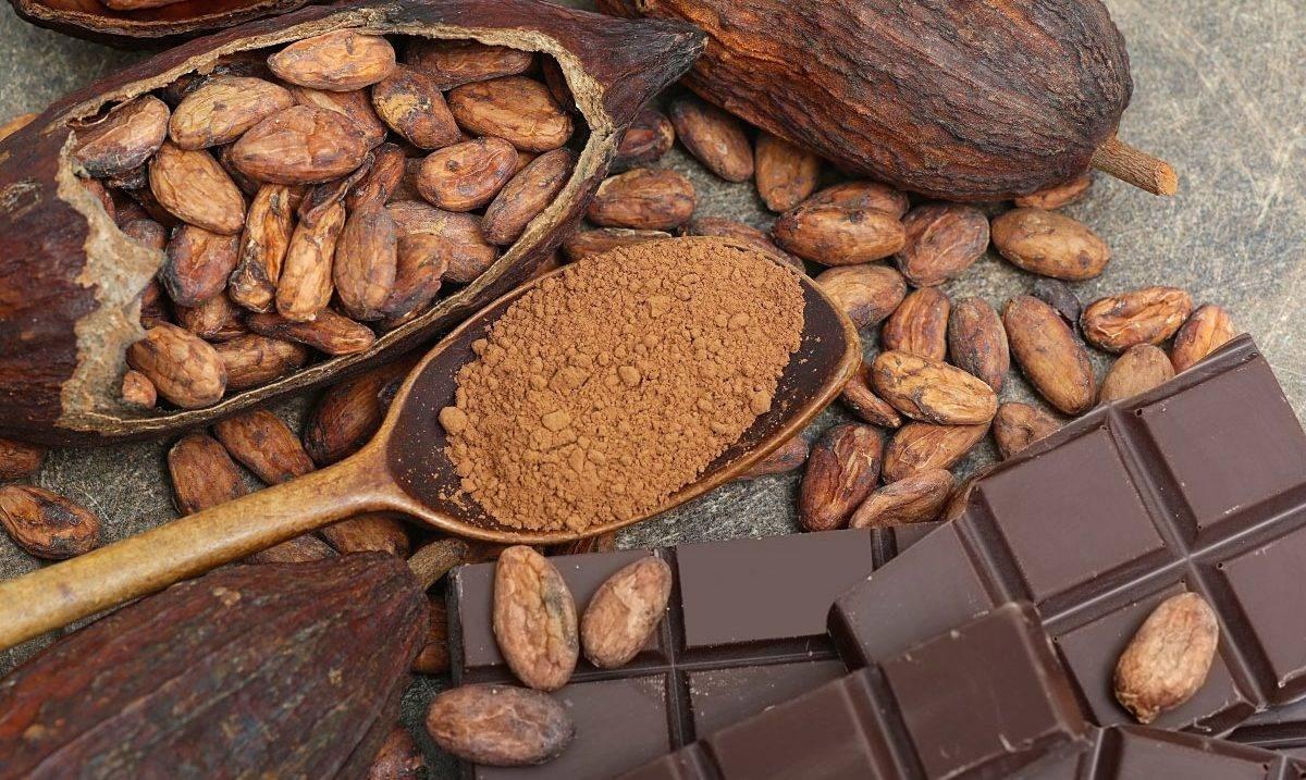تناول الكاكاو باعتدال يساعد على التحكم بمستوى السكر في الدم