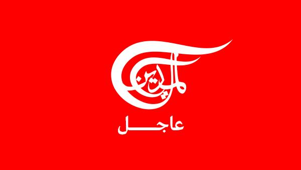 www.almayadeen.net