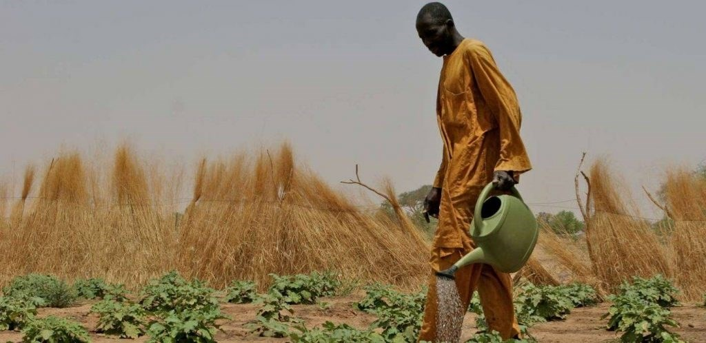 نهب أفريقيا.. فخّ الاتفاقيات المنمّقة لسرقة الشعوب