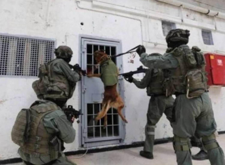 وحدات القمع الإسرائيلية تقتحم سجن عسقلان