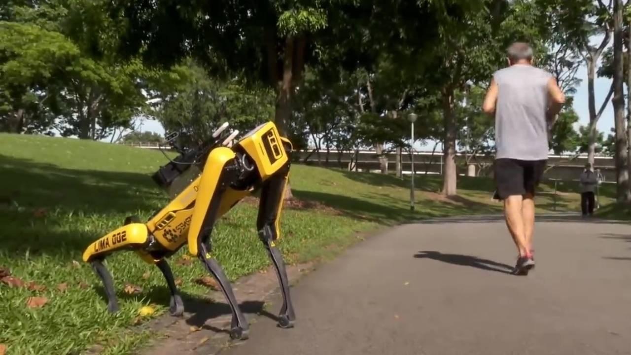 """كيف يساعد الروبوت """"Spot"""" في تعزير التباعد الاجتماعي؟"""