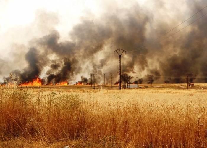 اشتباكات في الحسكة تحرق حقول القمح والشعير وتودي بحياة مدني