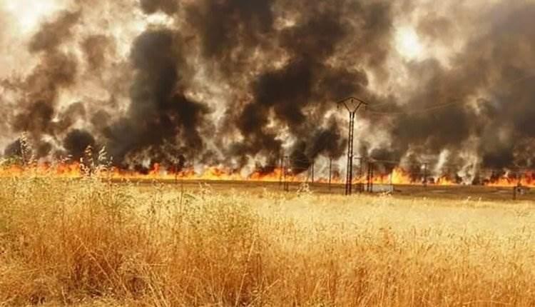 حريق بريف الحسكة السورية... وقتلى في اشتباكات المسلحين بعفرين