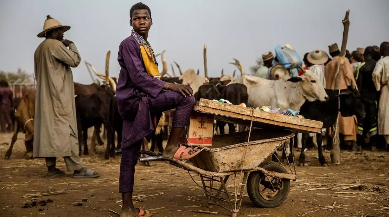 مقتل 60 شخصاً وإصابة المئات بهجومين لجماعات متشددة في نيجيريا