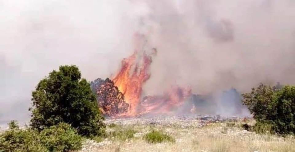 لبنان: حريق كبير يلتهم مساحات حرجية في جرود الهرمل