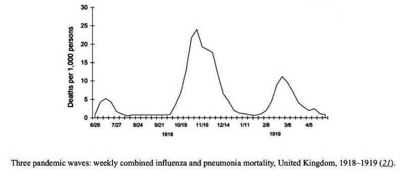 كانت الموجة الثانية من الإنفلونزا الإسبانية هي الأعنف بين الموجات الثلاث التي شهدها العالم