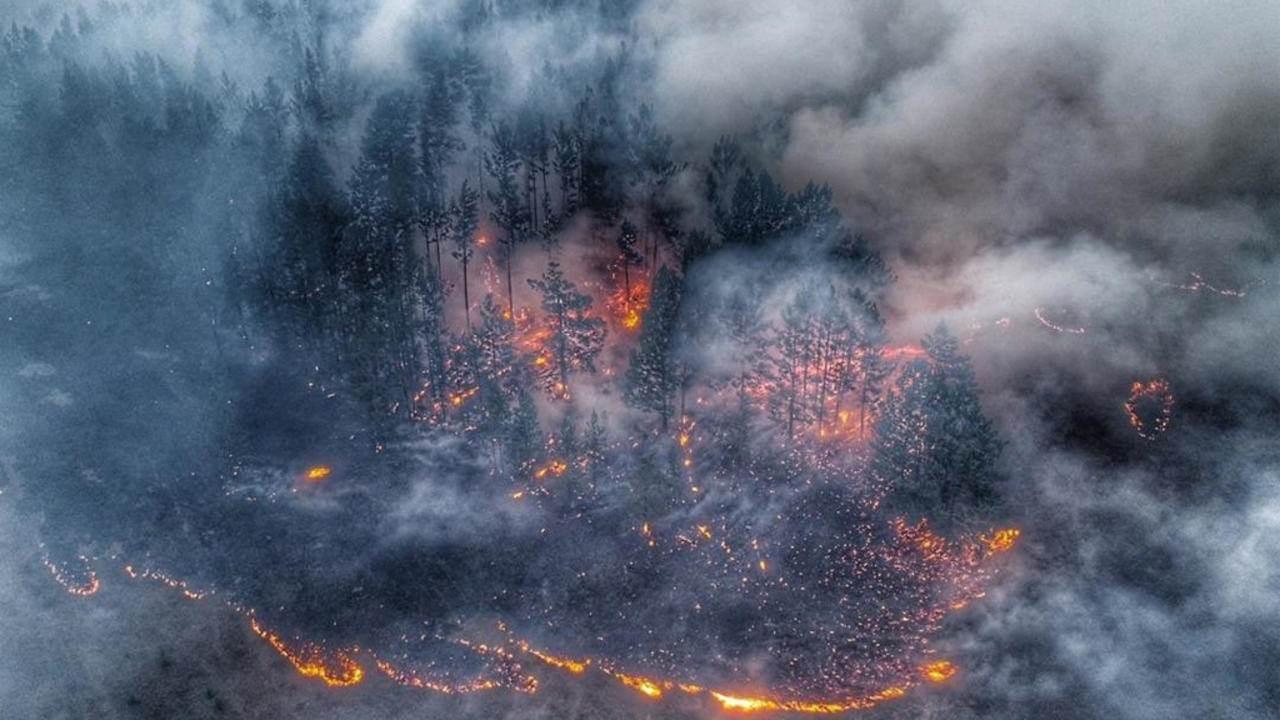 تواصل الحرائق في سيبيريا مع تسجيل درجات حرارة قياسية