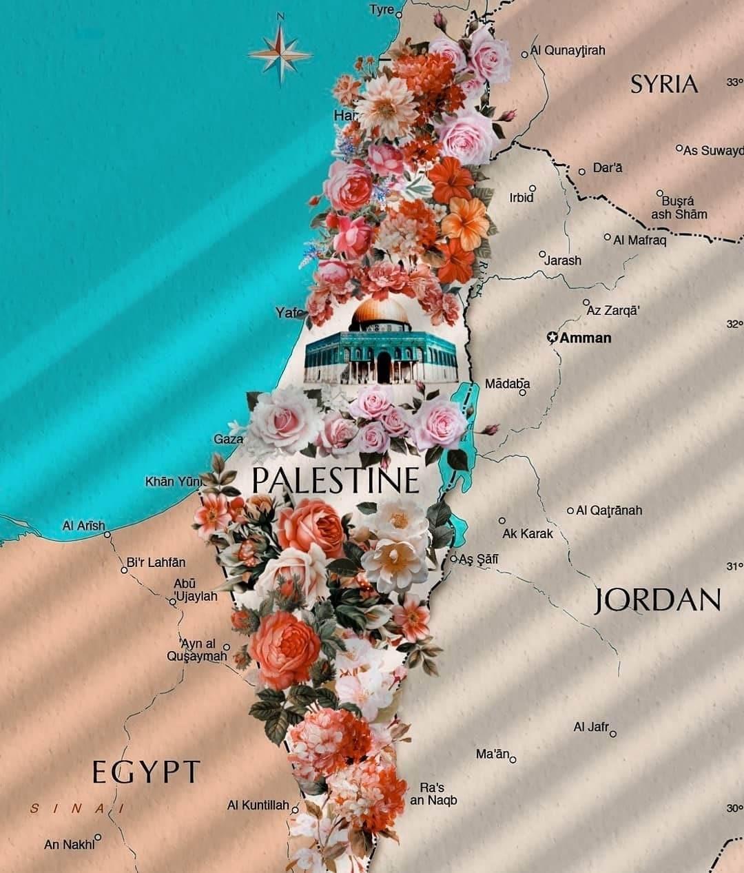 تداول المغردون صورة خريطة فلسطين مع الهاشتاغ الذي أطلقه كنعاني