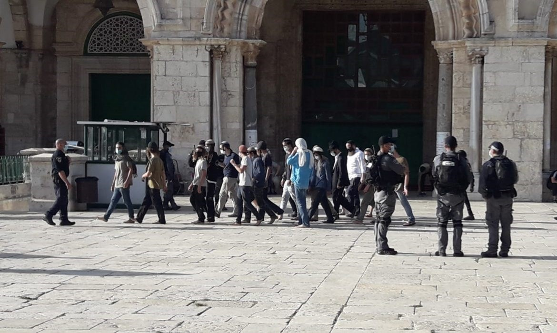 شبان فلسطينيون يحبطون اقتحام مستوطنين للأقصى.. والقوات الإسرائيلية تعتقل عدداً منهم