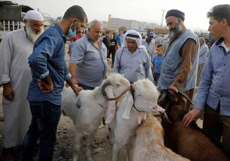 فلسطينيون يشترون أضاحي العيد في نابلس (رويترز)