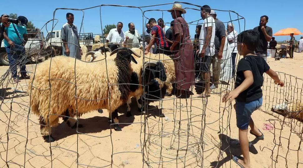 ليبيون في سوق الماشية في تاجوراء جنوب شرق طرابلس قبل عيد الأضحى (أ ف ب)