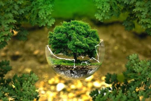 دراسة: كل دولار يتم إنفاقه على حماية البيئة مكسبه خمسة دولارات