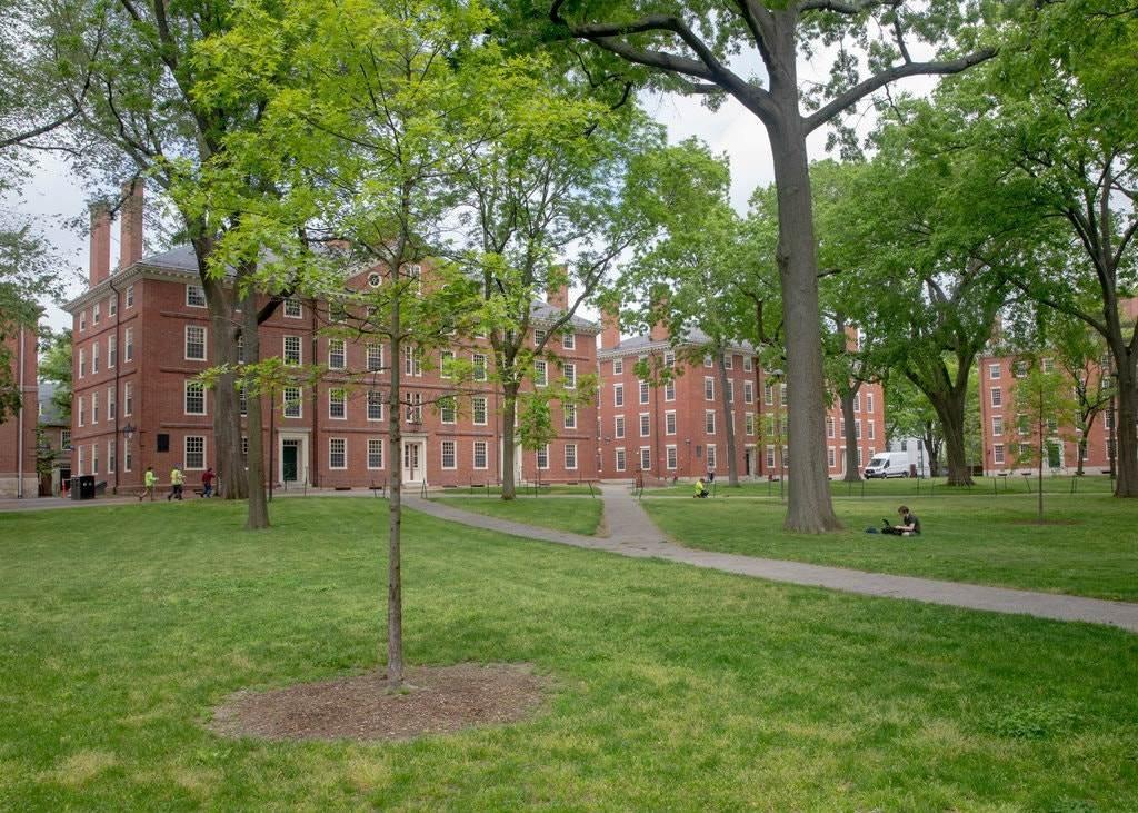 جامعة هارفارد واحدة من العديد من الجامعات الأميركية التي لديها الكثير من الطلاب الدوليين.
