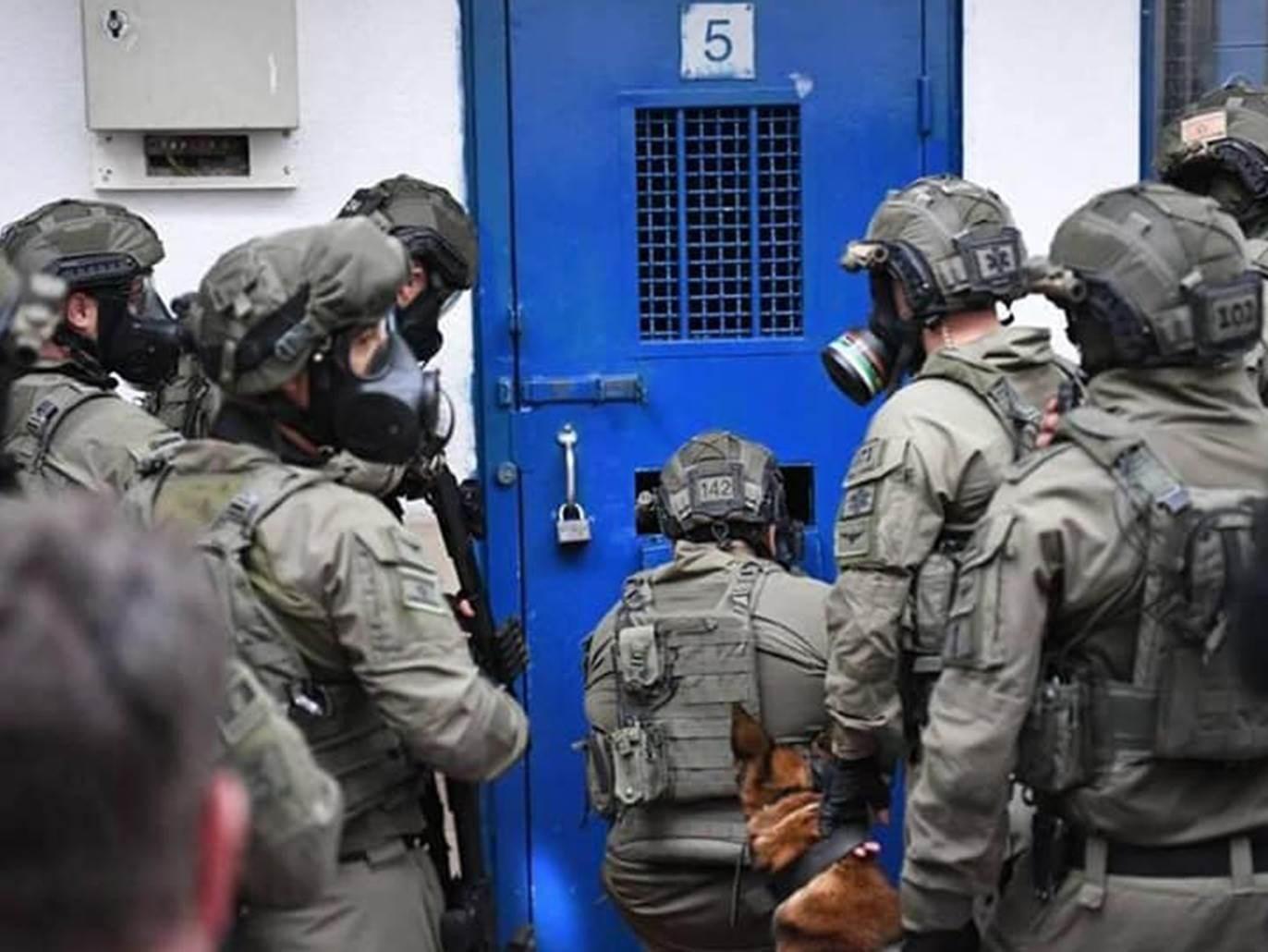 تقرير  لنادي الأسير حول  عدد الاسرى في سجون الاحتلال