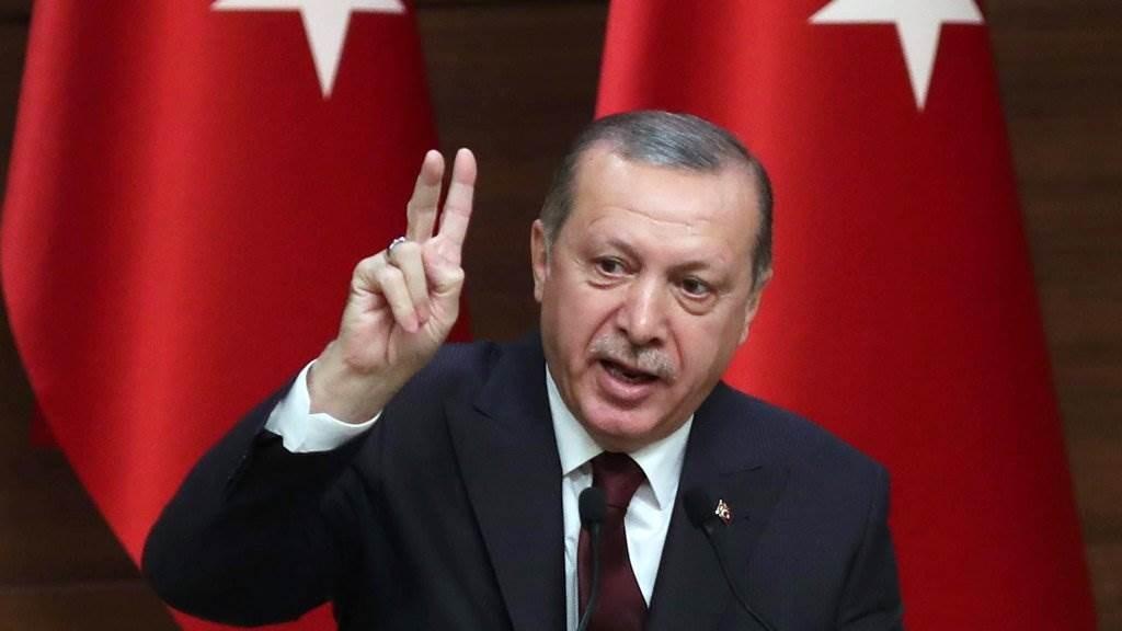 إردوغان: تركيا اكتشفت في البحر الأسود أكبر اكتشاف لحقل غاز طبيعي في تاريخها