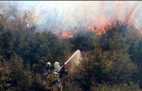 سوريا تعلن السيطرة على الحرائق في الغاب وريف مصياف