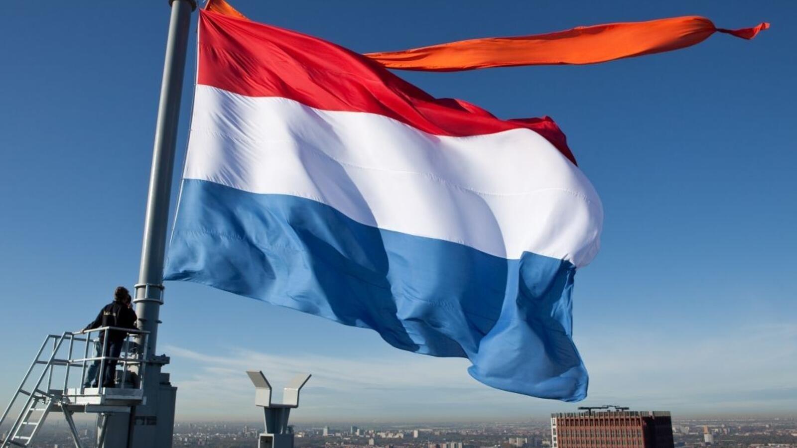 قرار الحكومة الهولندية