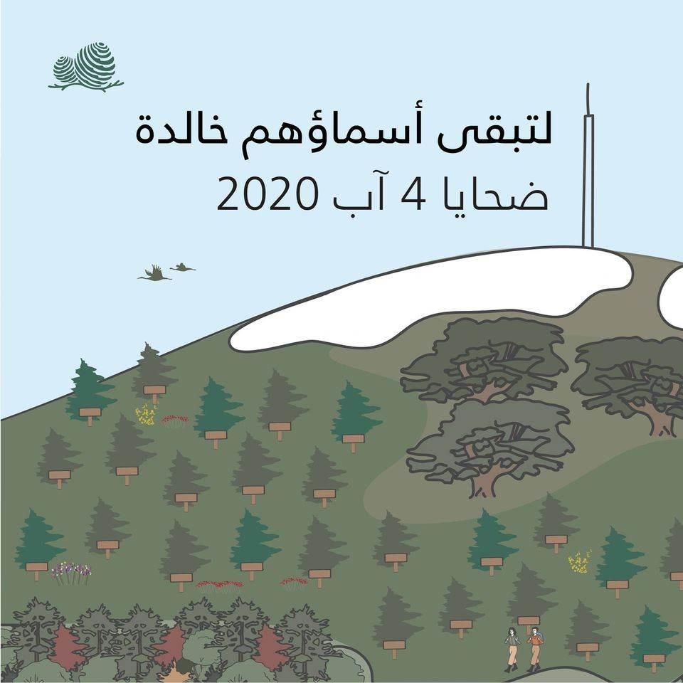 تكريماً لهم.. زَرْع غابة أرز تحمل أسماء ضحايا انفجار مرفأ بيروت