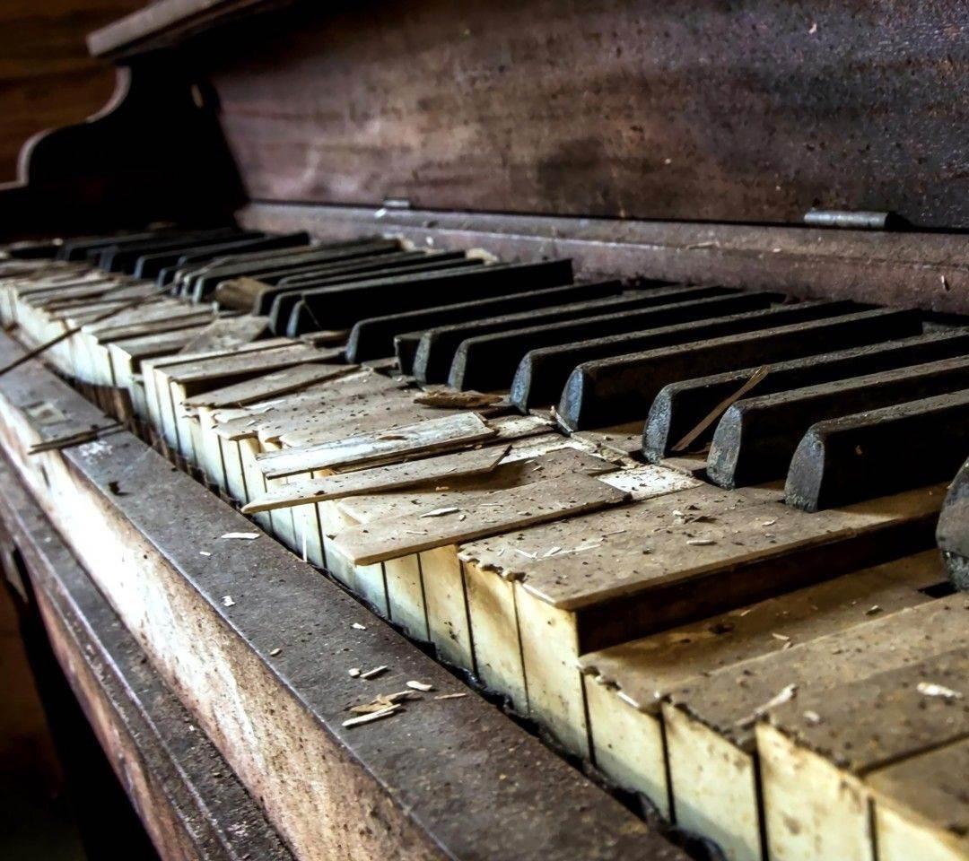 الموسيقى تنتصر لإرادة الحياة بعد انفجار بيروت