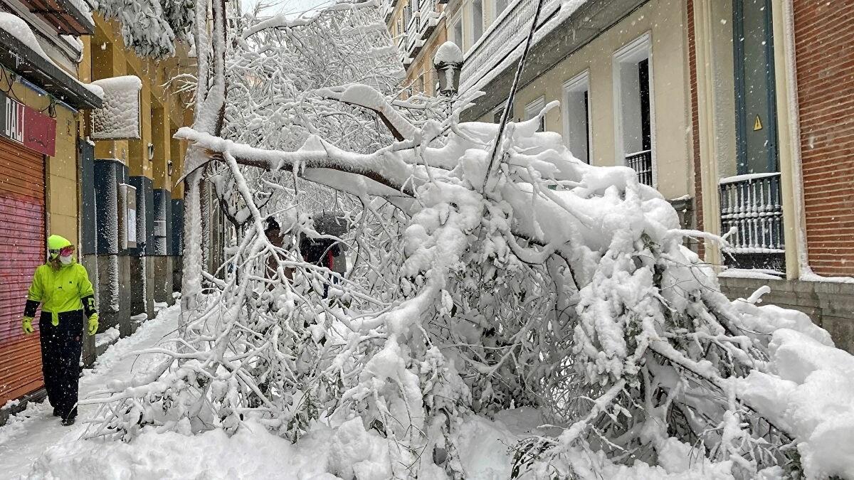 عاصفة ثلجية في مدريد تتسبب بأضرار تقدر بنحو 1.7 مليار دولار