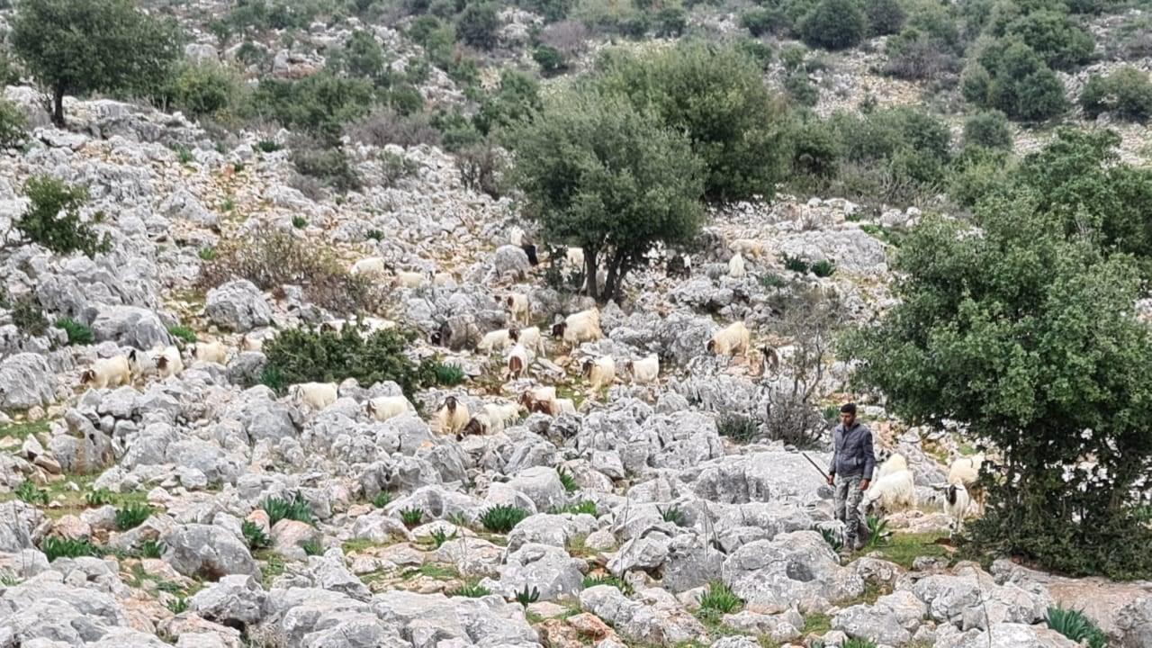 لبنان يتسلّم الراعي حسن زهرة الذي احتجزته