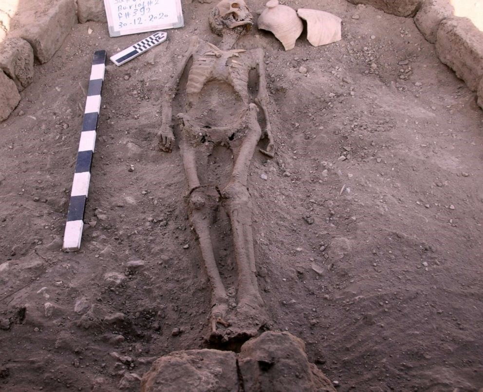 Skeletal remains found in the newly discovered 'lost city' near Luxor in Egypt (Courtesy/ Zahi Hawass Center For Egyptology)