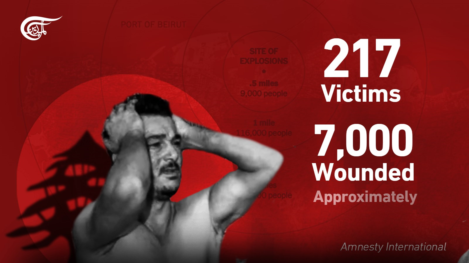 Around 217 people martyred